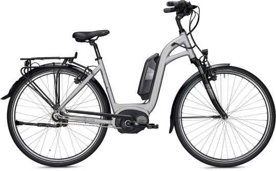 Falter E-Bike E 9.2 FL Wave Trend
